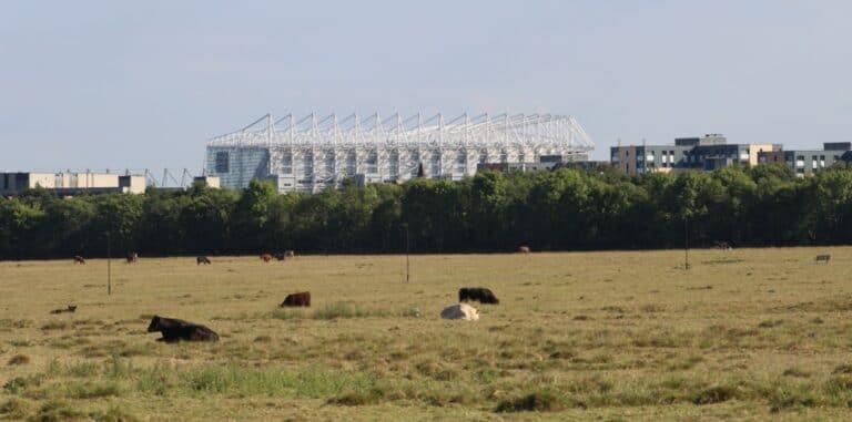 St_James'_Park_vu_depuis_Town_Moor_Newcastle_Tyne_1_1