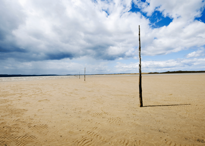 Holy Island Tour: Pilgrim's Way